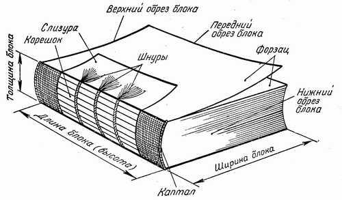 Книжный блок (рис.
